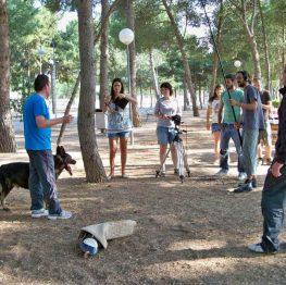 Documental de perros