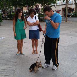 Adiestrador canino en Tomelloso