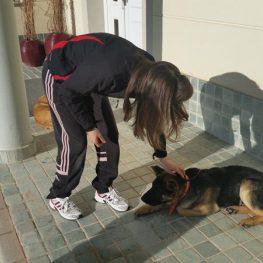 Adiestrador canino en Alcobendas